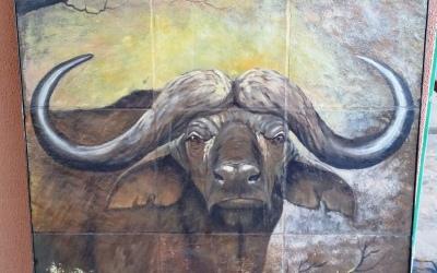 Panel Buffalo