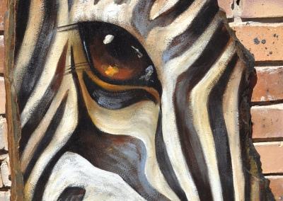 Abstract zebra eye